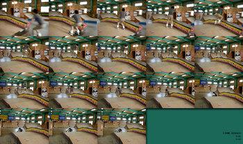 20090419_hide_kind.jpg