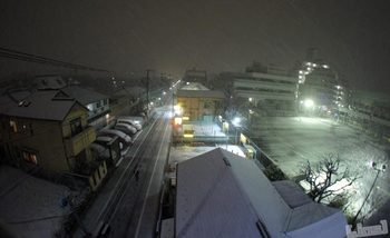 2012東京大雪DSC05522.jpg