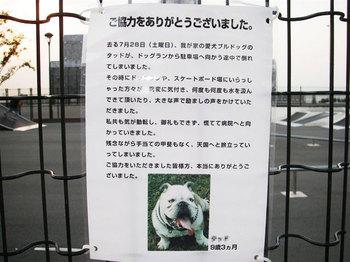 dog_IMGP1754_R.jpg